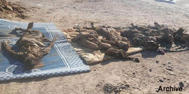 Mass Grave Isis Deir Ezzor Over Graves Of