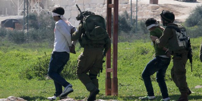 Israeli occupation forces arrest five Palestinians in the West Bank