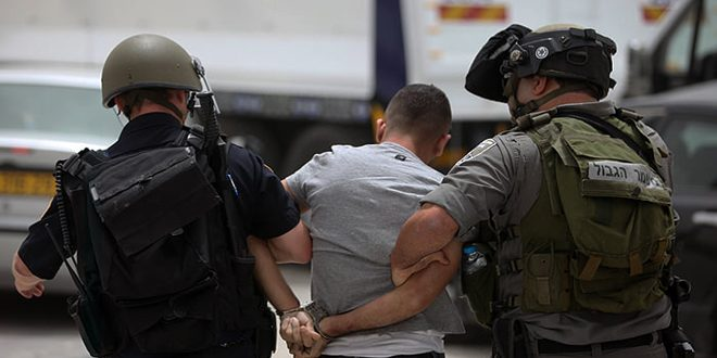 Israeli occupation forces arrest twenty Palestinians in the West Bank