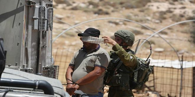 Occupation forces arrest 7 Palestinians in Hebron