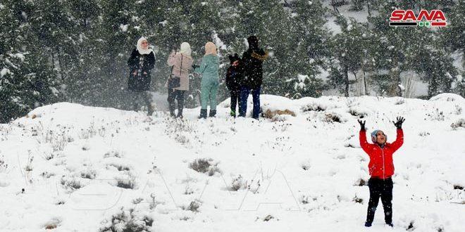 Ciudad siria de Bloudan cubierta de nieve (fotos)
