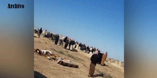 Terroristas asesinan un civil y masacran 100 cabezas de ganado en Raqa