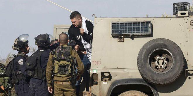 Les forces d'occupation israéliennes arrêtent cinq Palestiniens en Cisjordanie