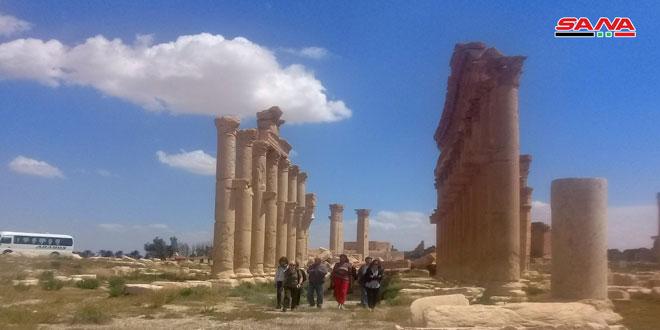 Пальмиру посетила группа туристов из Испании
