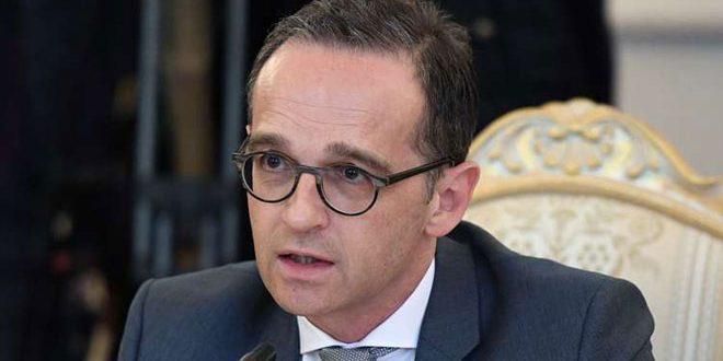 Глава МИД ФРГ: Турецкая агрессия в Сирии противоречит международному праву