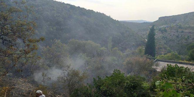 В окрестностях Джебла потушено нескольких пожаров