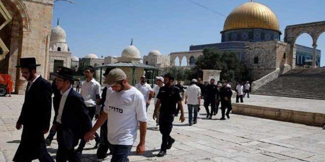 Израильские поселенцы вновь вторглись в мечеть Аль-Акса в оккупированном Кудсе