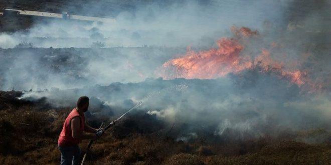В селениях Шин и Ас-Сувейри провинции Хомс потушен пожар