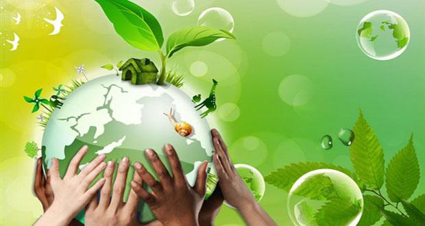 Environment.jpg (620×330)