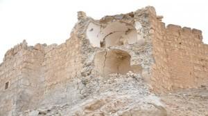 Palmyra rehabilitation 2