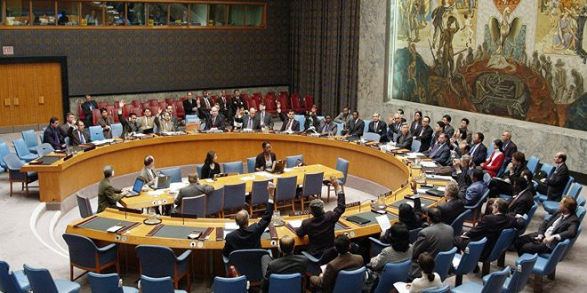 Security Council adopts resolution on humanitarian aid delivery in Syria through one border crossing