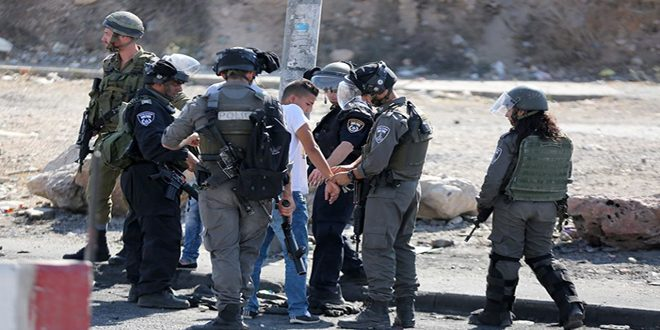 Israeli occupation forces arrest 11 Palestinians in the West Bank
