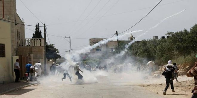 Dozens of Palestinians suffer suffocation after occupation forces attack west of Jenin