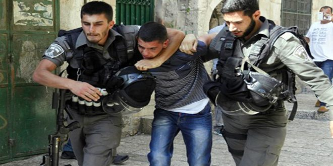 Israeli occupation forces arrest a Palestinian in Jenin
