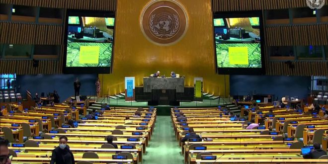 Syria participates in high-level virtual dialogue on desertification and drought