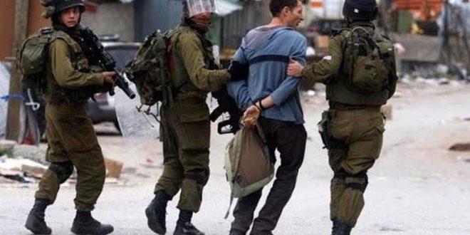 Israeli occupation forces arrest twelve Palestinians in the West Bank