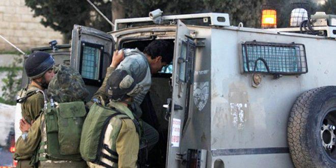 Israeli Occupation forces arrest two Palestinians in  Occupied Jerusalem
