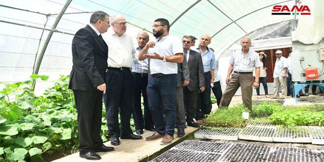 Un centro para producir retoños en la Facultad de Agricultura de Damasco