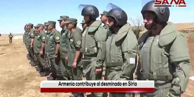 Video: Armenia participa en operaciones de desminado en Siria