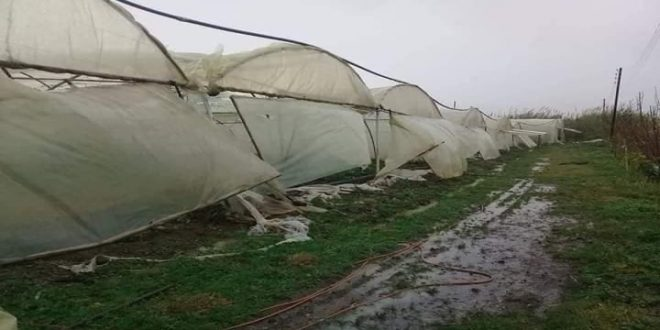 Torrenciales lluvias provocan daños en invernaderos y red eléctrica en Tartous