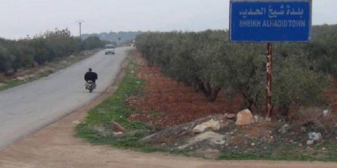 Mercenarios pro turcos se apoderan de tierras agrícolas en el campo de Alepo