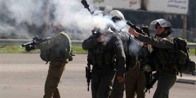 حمله مجدد رژیم صهیونیستی به مدارس فلسطینی در الخلیل