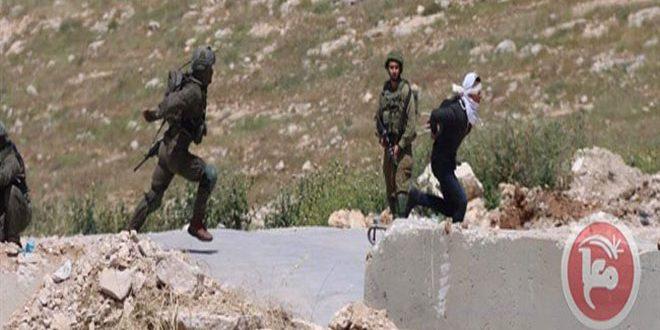 کرانه غربی: جراحت یک فلسطینی به ضرب گلوله اشغالگر در جنوب بیت لحم