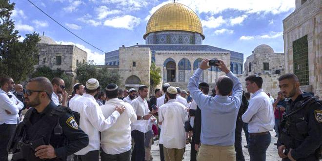 یورش مجدد شهرک نشینان به مسجد الاقصی