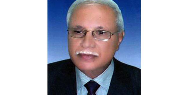 یک سیاستمدار مصری: مقاومت سوریه در مقابل تروریسم از تمام منطقه حفاظت کرد