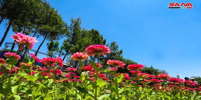 فعالیت های مختلف وزارت گردشگری در نمایشگاه گل و گیاه در پارک تشرین