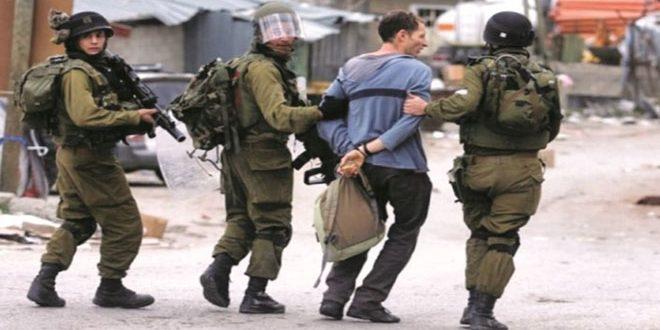 دستگیری 12 فلسطینی در کرانه باختری