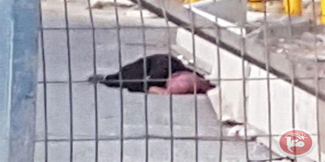 شهادت یک زن فلسطینی به ضرب گلوله نظامیان صهیونیست در شمال قدس اشغالی