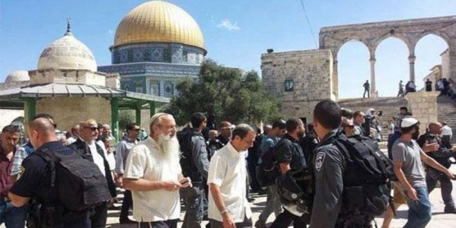 یورش صدها شهرک نشین صهیونیست به مسجد الاقصی