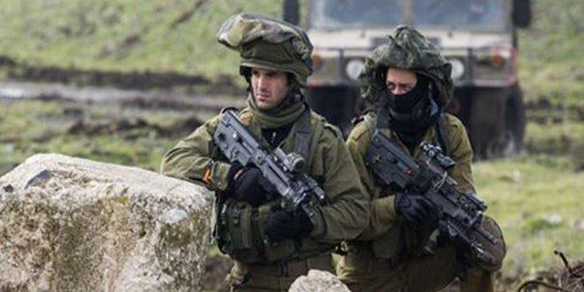 کرانه غربی: جراحت یک فلسطینی و دستگیری 14 دیگر