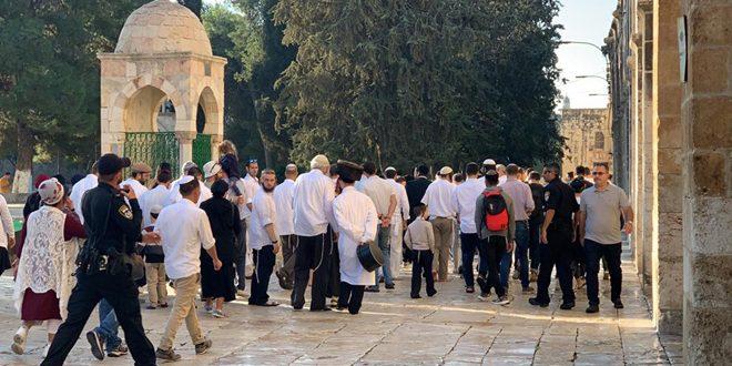 یورش 400 شهرک نشین صهیونیست به مسجد الاقصی