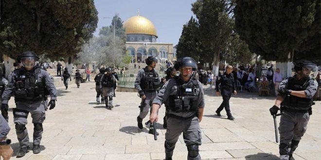 یورش مجدد شهرک نشینان به مسجد الاقصی تحت حمایت رژیم اشغالگر