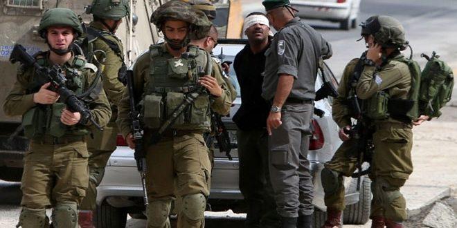 بازداشت 8 فلسطینی در کرانه باختری توسط نیروهای اشغالگر اسرائیلی