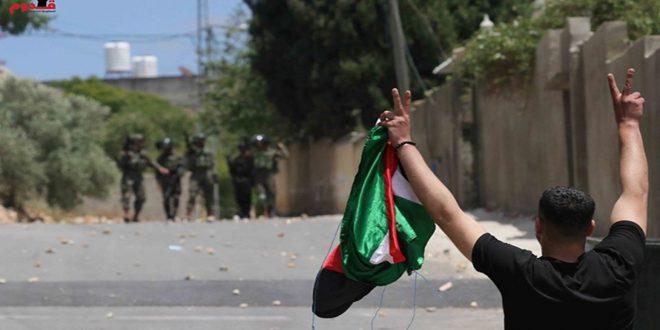 جراحت ده ها نفر فلسطینی ها در سرکوب تظاهرات هفتگی کفر قدوم توسط اشغالگر