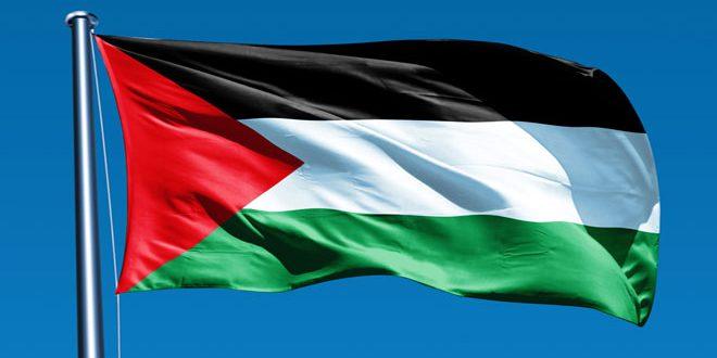 فنلاند: تظاهرات در محکومیت برنامه های رژیم اشغالگر برای الحاق اراضی فلسطینی