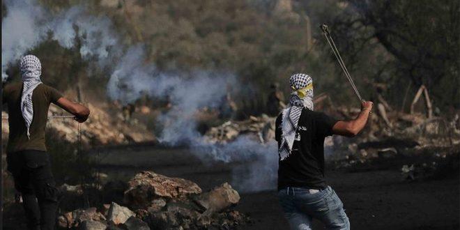 جراحت ده ها فلسطینی در سرکوب تظاهرات هفتگی کفر قدوم توسط اشغالگر