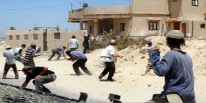 """یورش شهرک نشینان صهیونیست به روستای """"اللبن الشرقیه"""" در جنوب نابلس"""