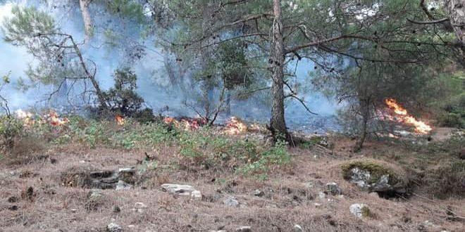 تداوم آتش سوزی ها در تعدادی از مناطق لبنان