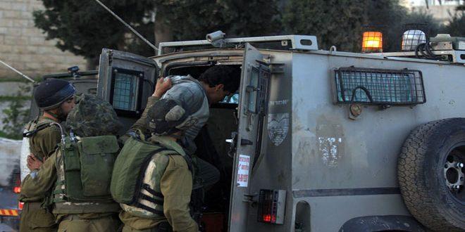 بازداشت 9 فلسطینی توسط نیروهای اشغالگر در کرانه باختری