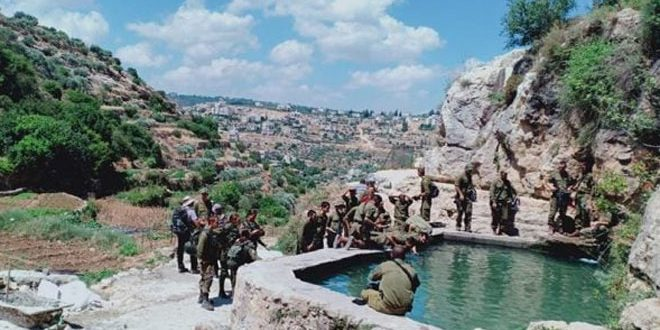 حمله به اراضی فلسطینی در غرب شهر بیت لحم توسط  شهرک نشینان