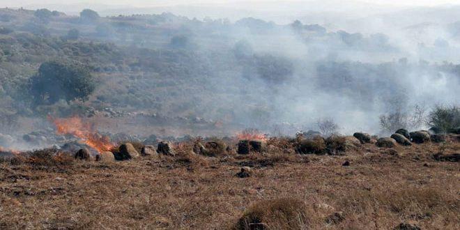مهار آتش سوزی در اراضی کشاورزی در شهرک المشیرفه در حومه حمص