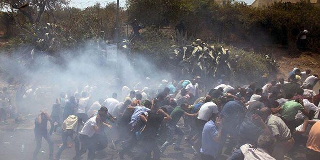 زخمی شدن دو فلسطینی به ضرب گلوله نیروهای رژیم اشغالگر در شمال غربی قدس اشغالی