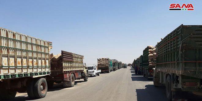 L'établissement des céréales achètent 135 mille tonnes de blé des paysans