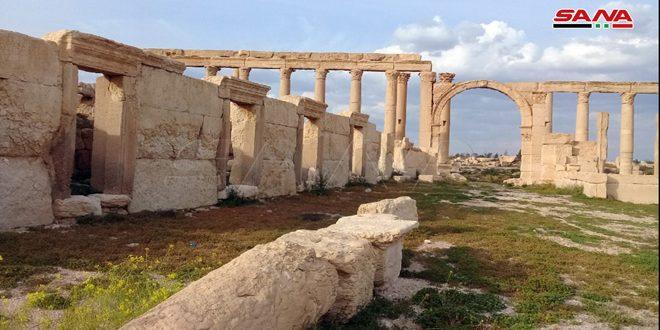 Les Palmyréniens, premier peuple qui a élaboré un document sur le système fiscal au monde