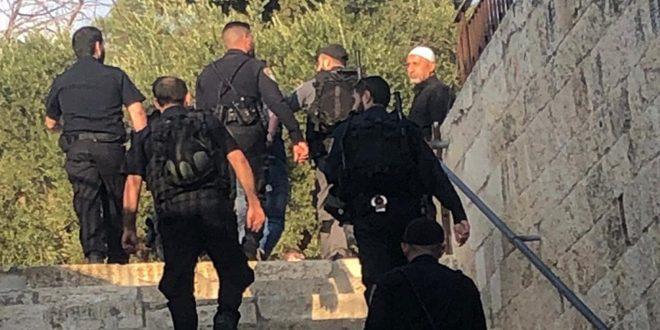 Les forces d'occupation arrêtent 3 Palestiniens à al-Qods occupé