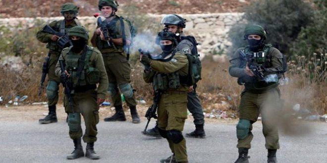 Trois Palestiniens blessés par les balles de l'occupation à Jénine